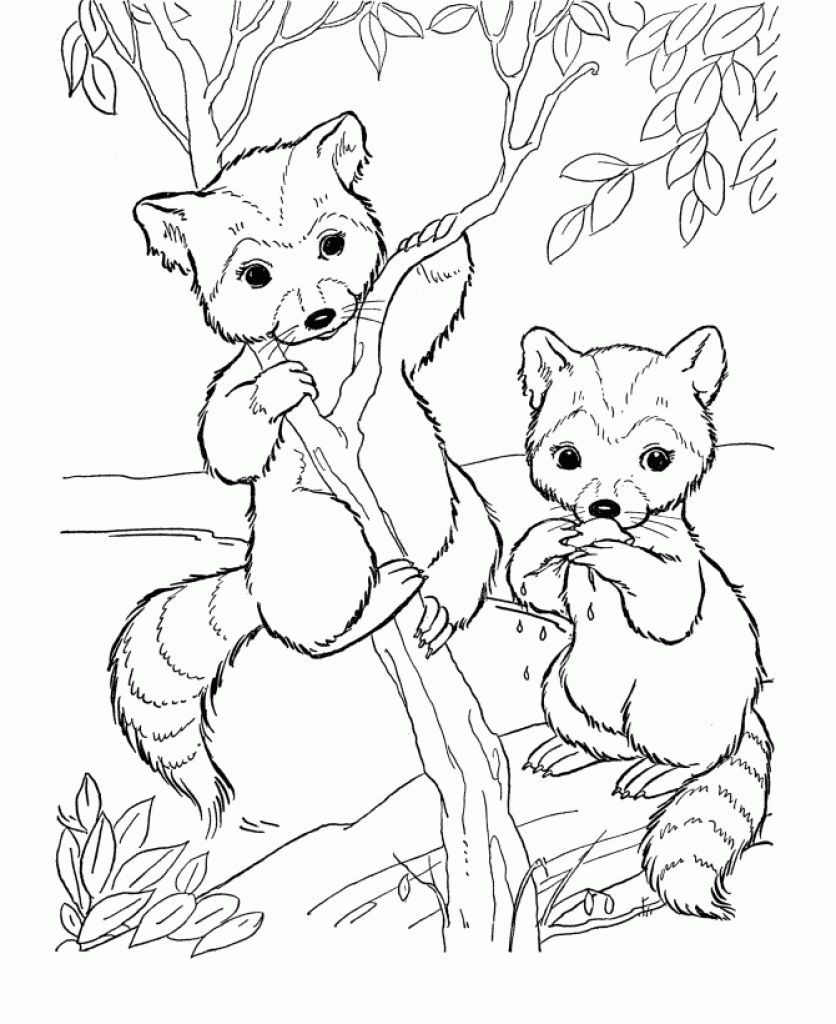 Baby Animals Coloring Pages Free Pictures Silhouetten Collection ...