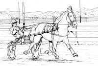 Race Horse Coloring Pages - Race Horse Coloring Page Coloring Horse Coloring Page for Kids Collection