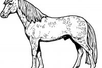 Race Horse Coloring Pages - Race Horse Coloring Pages Horses to Print