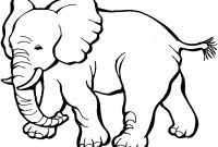 Animal Coloring Pages - Animal Coloring Pages Printable Coloring Pages for Children