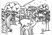 Animal Coloring Pages - Collection Of Woodland Animals Coloring Pages