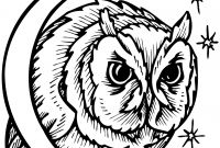 Animal Coloring Pages - Nocturnal Animals Coloring Pages