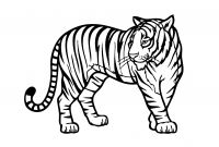 Animal Coloring Pages - Wild Animal Coloring Page Best Tiger Color Fresh Tiger Wild
