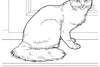 Cat Coloring Pages - Cat Coloring Pages to Print Save Cats Coloring Pages Free and Cat to
