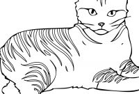 Cat Coloring Pages - Free Printable Cat Coloring Pages for Kids