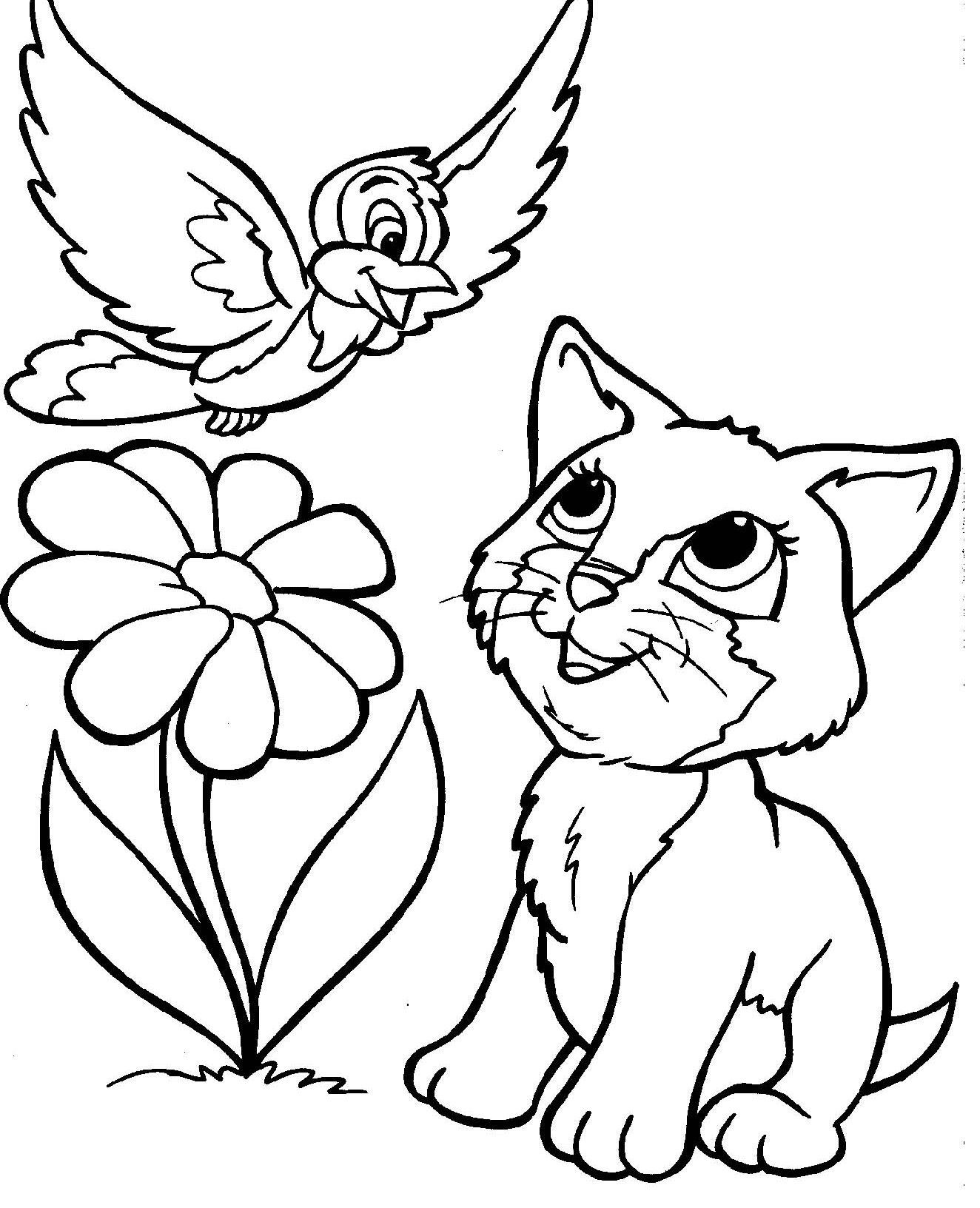 Cat Coloring Pages Download 6o - Save it to your computer