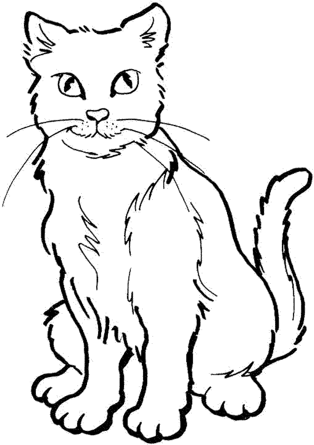 Cat Coloring Pages Download | Free Coloring Sheets