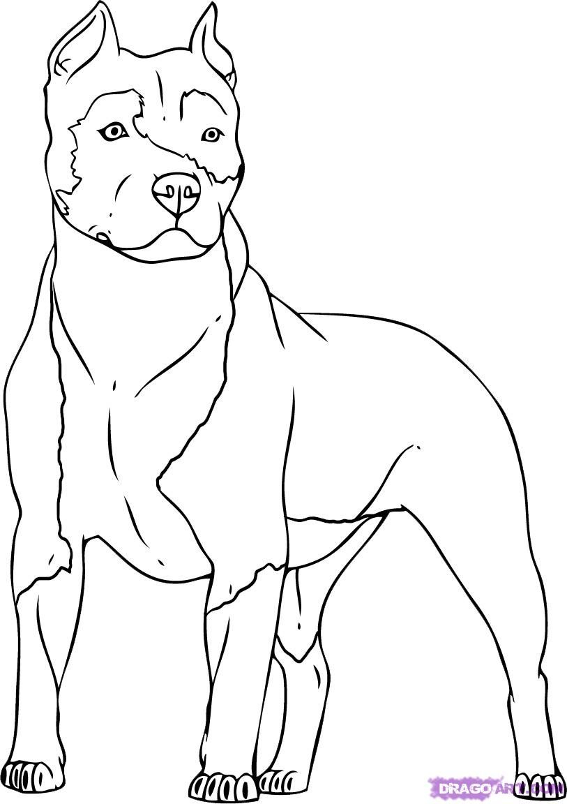 Dog Coloring Pages Collection 4m - Free For kids