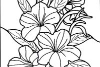 Flower Coloring Pages - Hibiscus Coloring Pages to Print Hibiscus Flower Coloring Pages