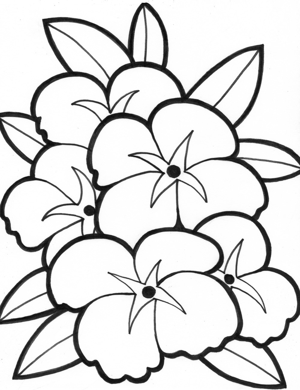 Flower Coloring Pages Download | Free Coloring Sheets