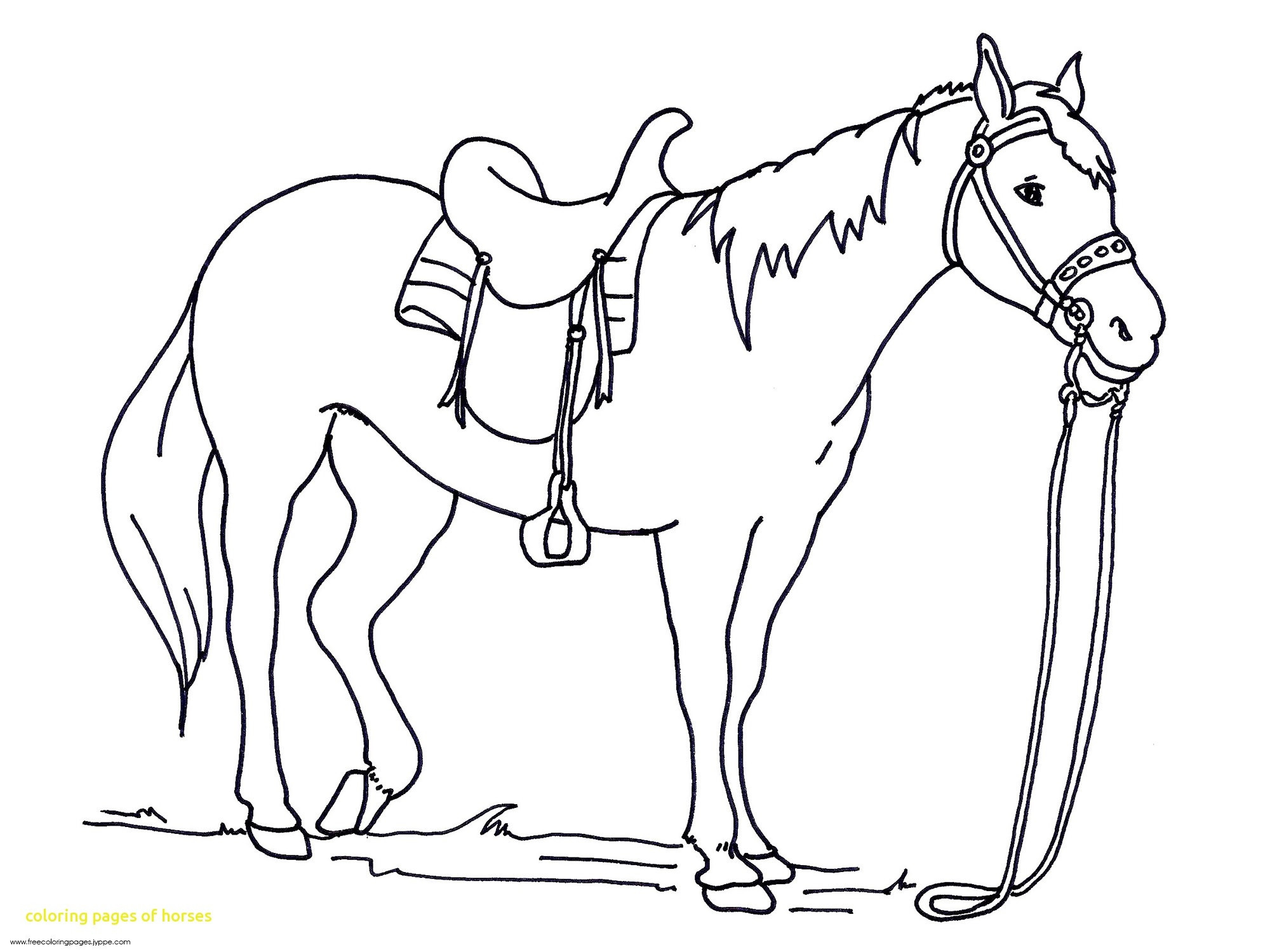 Horse Coloring Pages Printable 1c - To print for your project