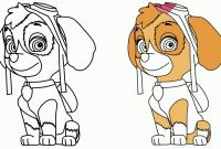 Paw Patrol Coloring Pages - Paw Patrol Coloring Pages Drawing Skye From Best Mofassel