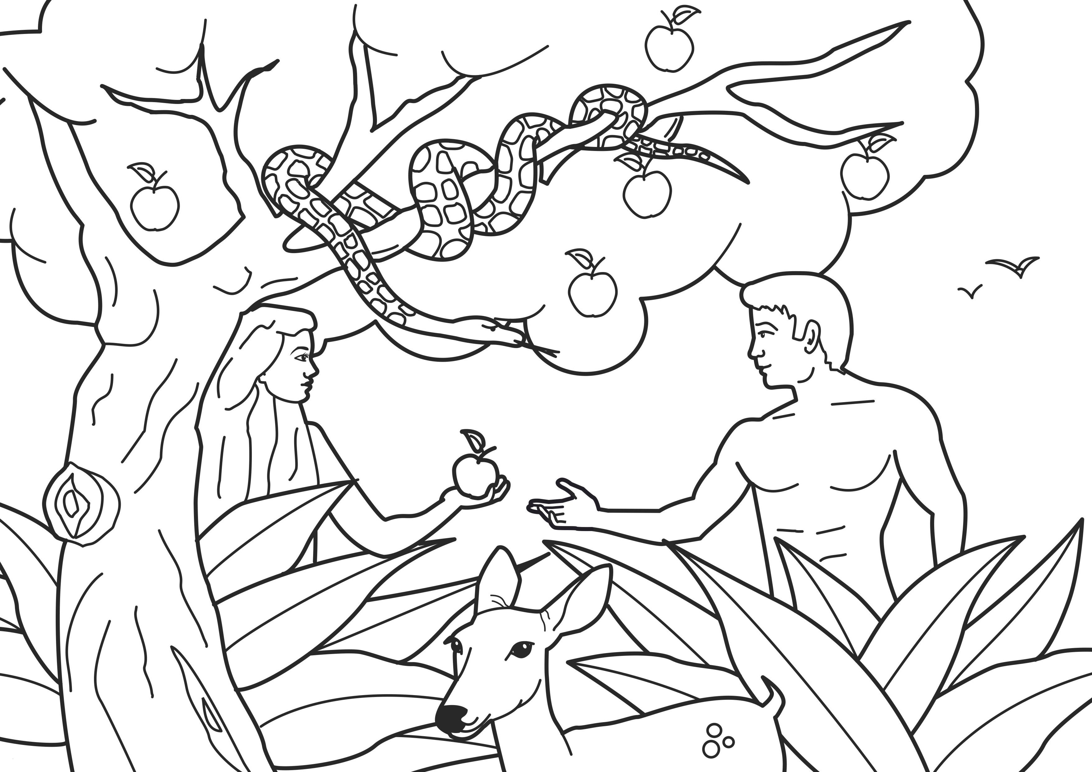 Adam and Eve Coloring Pages  Collection 16g - Save it to your computer
