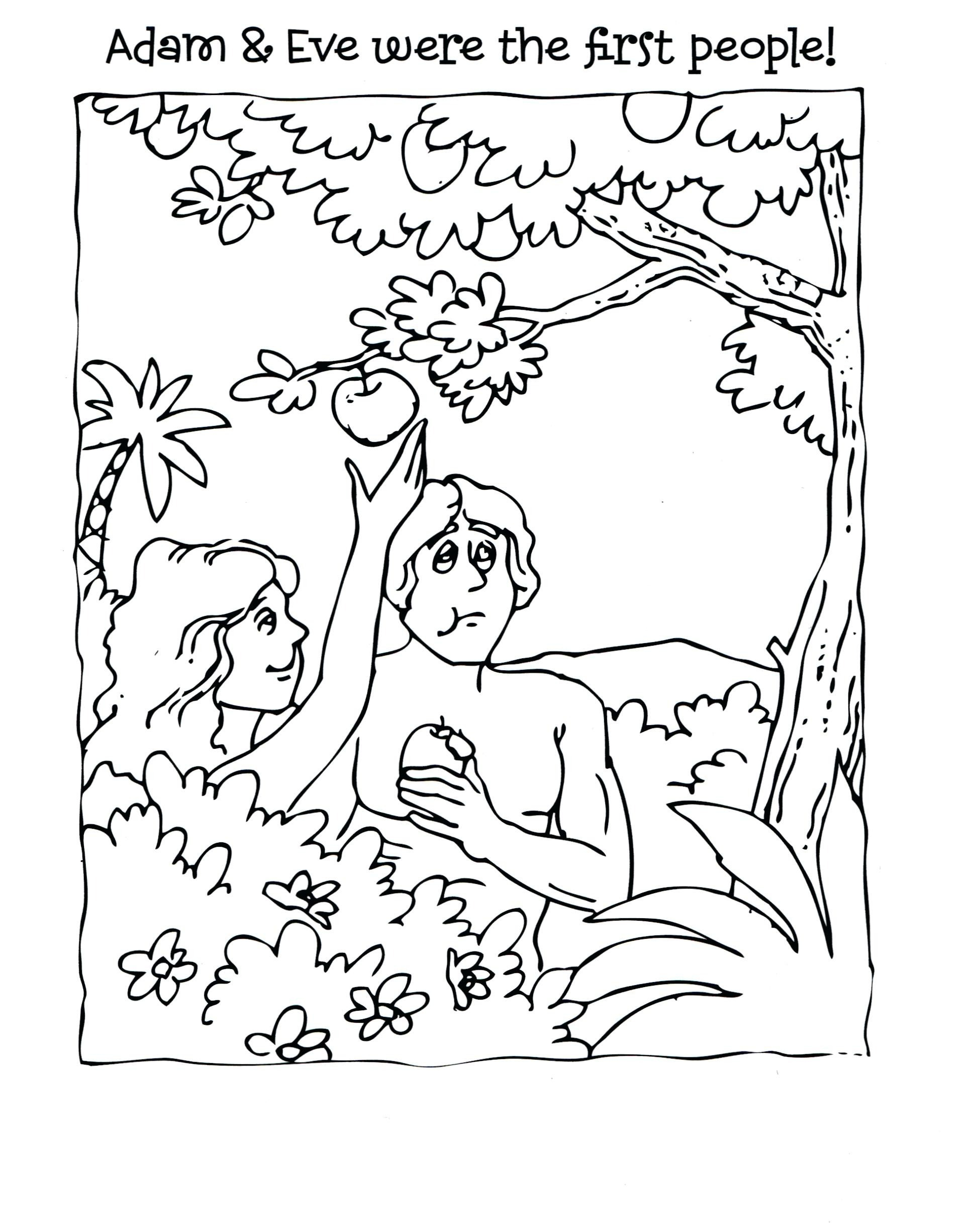 Adam and Eve Coloring Pages  Collection 19e - To print for your project