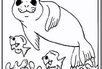 Advanced Animal Coloring Pages - Kids Coloring Pages Animals Printable