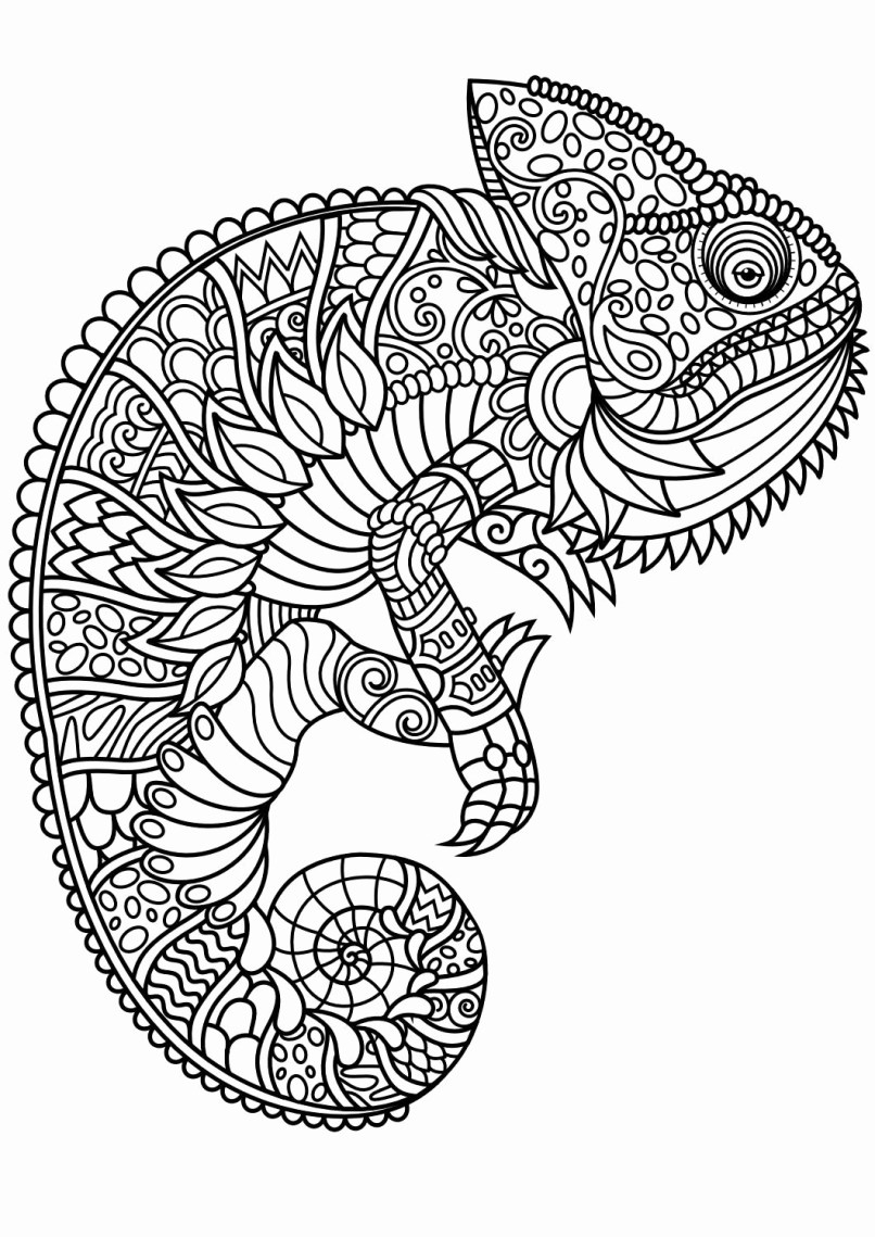 Animal Coloring Pages Pdf  to Print 2n - Save it to your computer