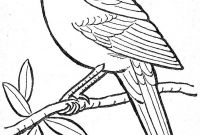 Arizona Cardinals Coloring Pages - 17 New Cardinal Coloring Page