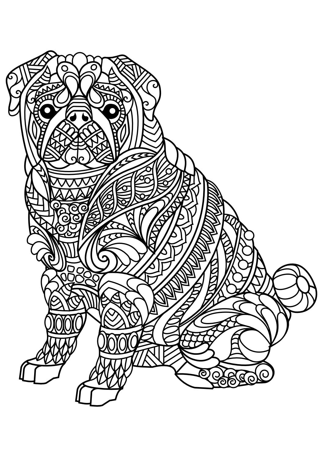 Bassett Hound Coloring Pages  to Print 16q - To print for your project