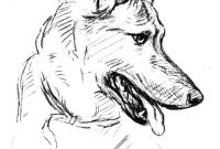 Bassett Hound Coloring Pages - Baby German Shepherd Coloring Pages › Mrengmengnk