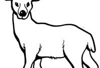 Bassett Hound Coloring Pages - Coloring Pages Of Deer Printable Kids Colouring Pages