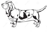 Bassett Hound Coloring Pages - Decorative Standing Portrait Basset Hound Vector Illustration