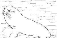 Carson Dellosa Coloring Pages - Galapogas island Colouring Sheets Google Search