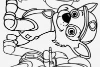 Coloring Pages Camera - Free Download Free Paw Patrol Coloring Pages