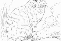 Coloring Pages Of Kittens - Fresh Cute Kitten Coloring Page Free Printable Pages Simple Mosm