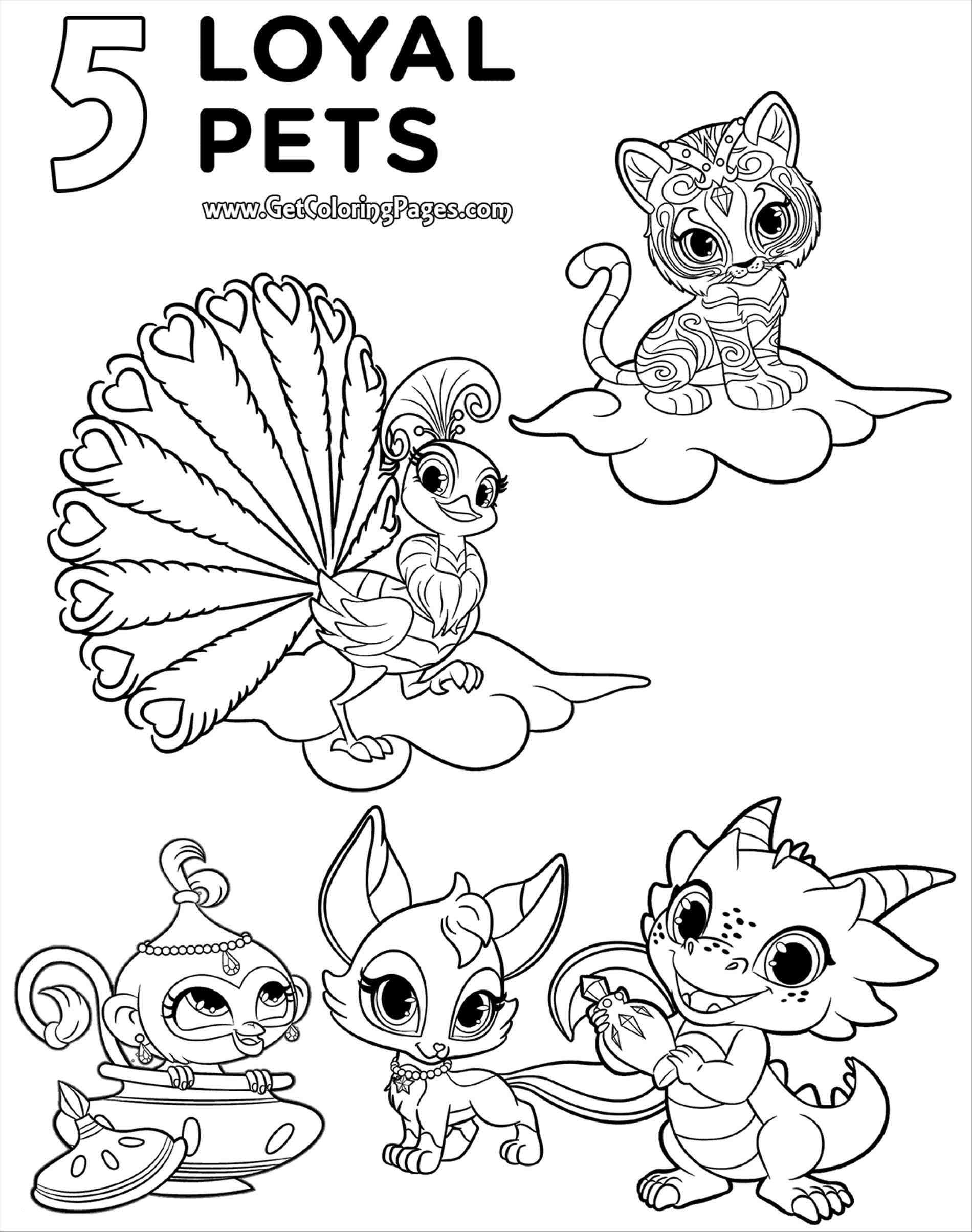 Coloring Pages Shimmer and Shine  Collection 10b - Free Download