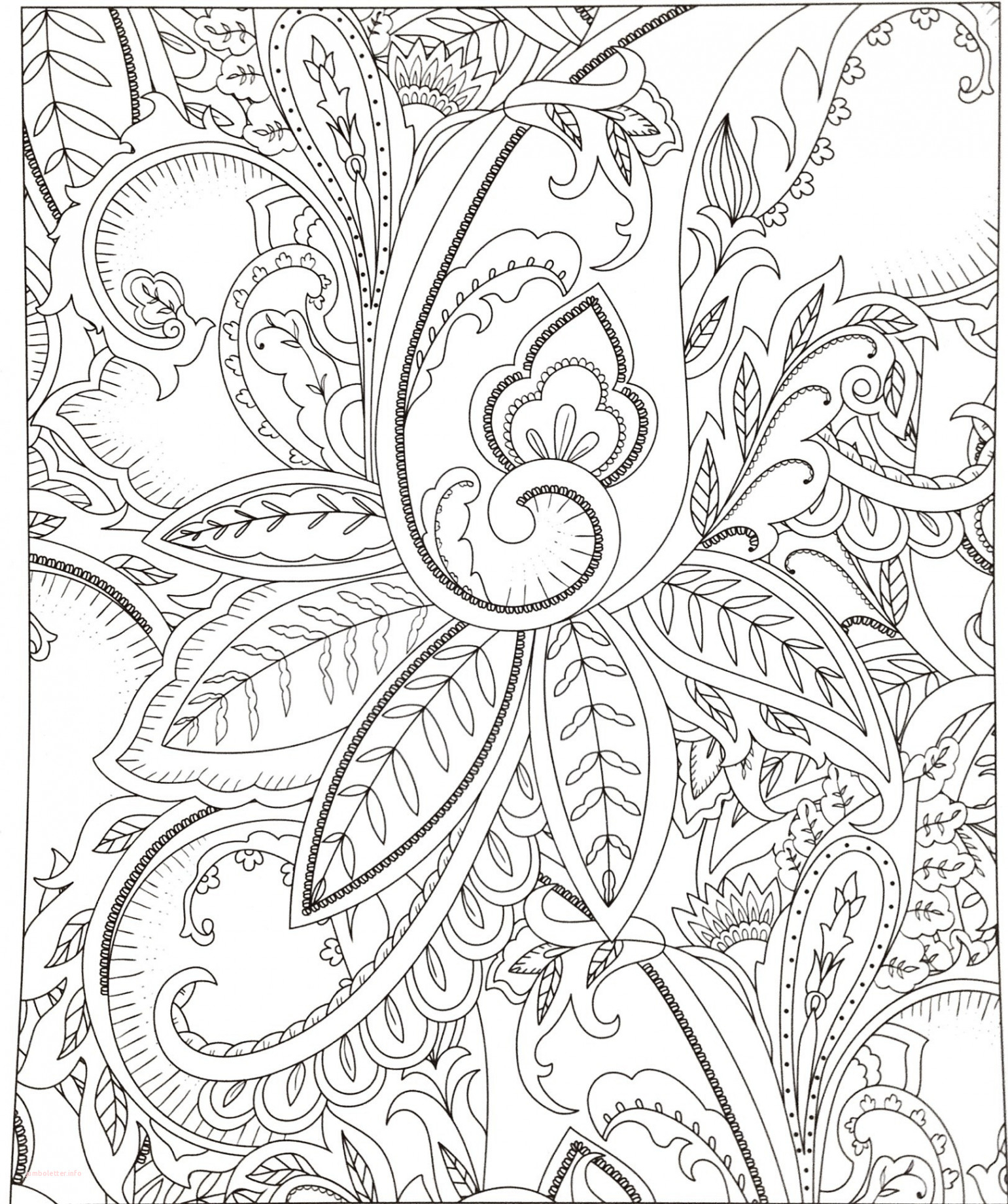 Cowgirl Boots Coloring Pages  Download 18c - Save it to your computer