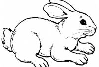 Cute Bunny Coloring Pages - Realistic Rabbit Coloring Pages Printable