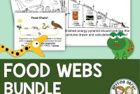 Food Chain Coloring Pages - Food Chains Food Webs and Energy Pyramids