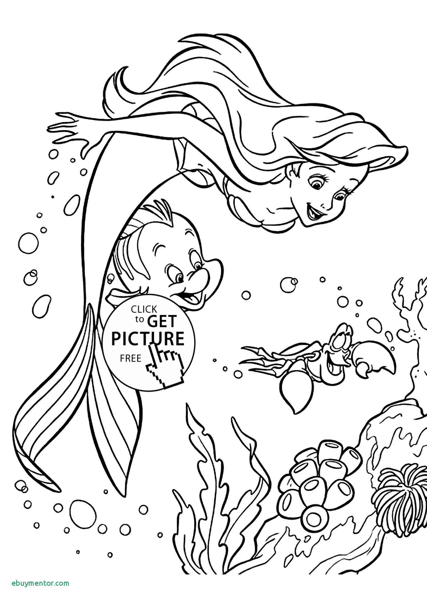Free Little Mermaid Coloring Pages  Download 15t - Free Download