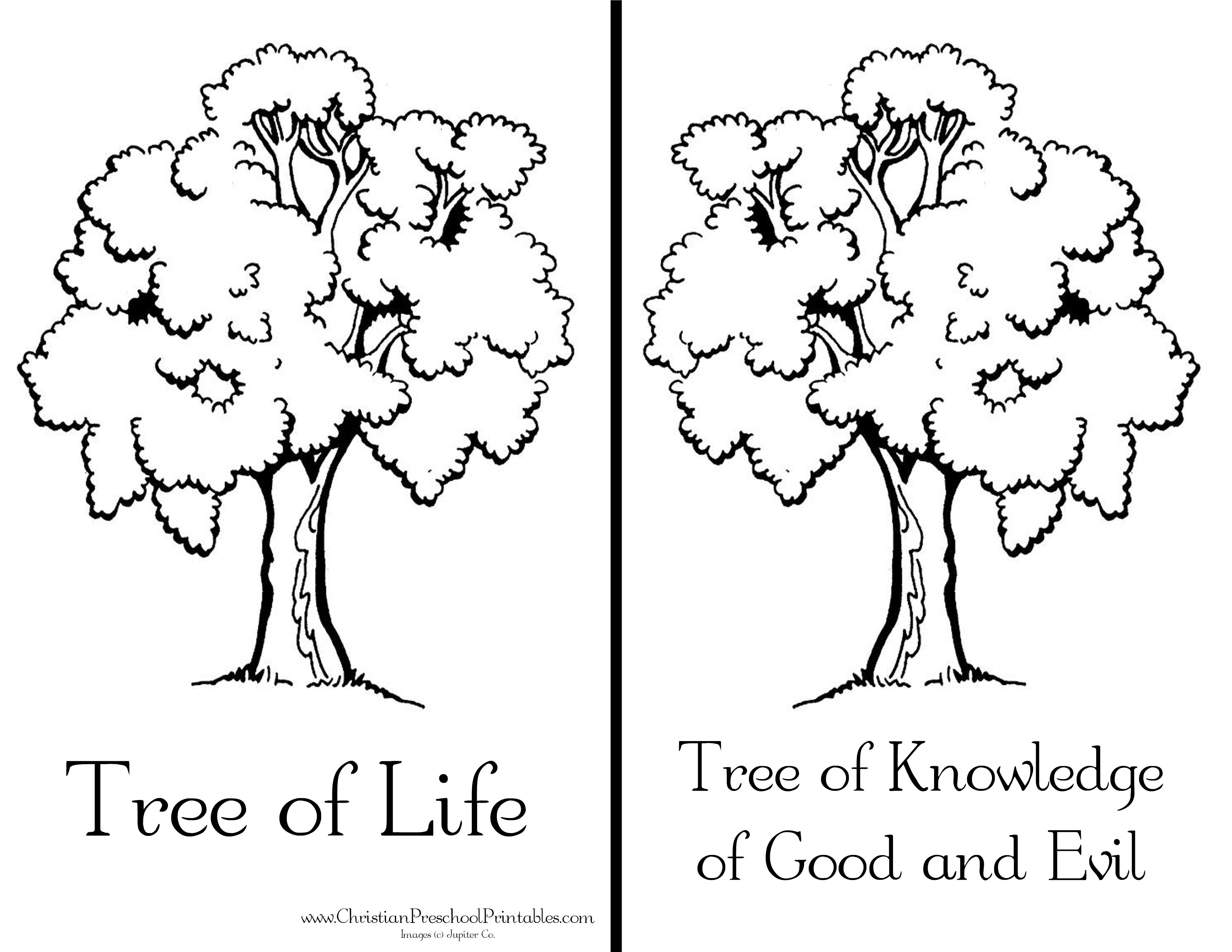 Garden Of Eden Coloring Pages  Printable 18r - Free For Children