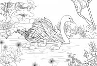 Gay Coloring Pages - Jaguar Coloring Pages