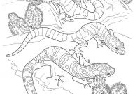 Gecko Coloring Pages - Gecko Coloring Page New Coloring Printing Pages Fresh Home Coloring