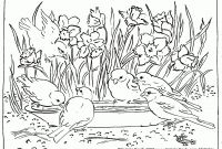 Gecko Coloring Pages - Luxury Pond Animals Coloring Pages Flower Coloring Pages