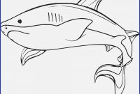 Great White Shark Coloring Pages - 16 Inspirational Coloring Pages Sharks