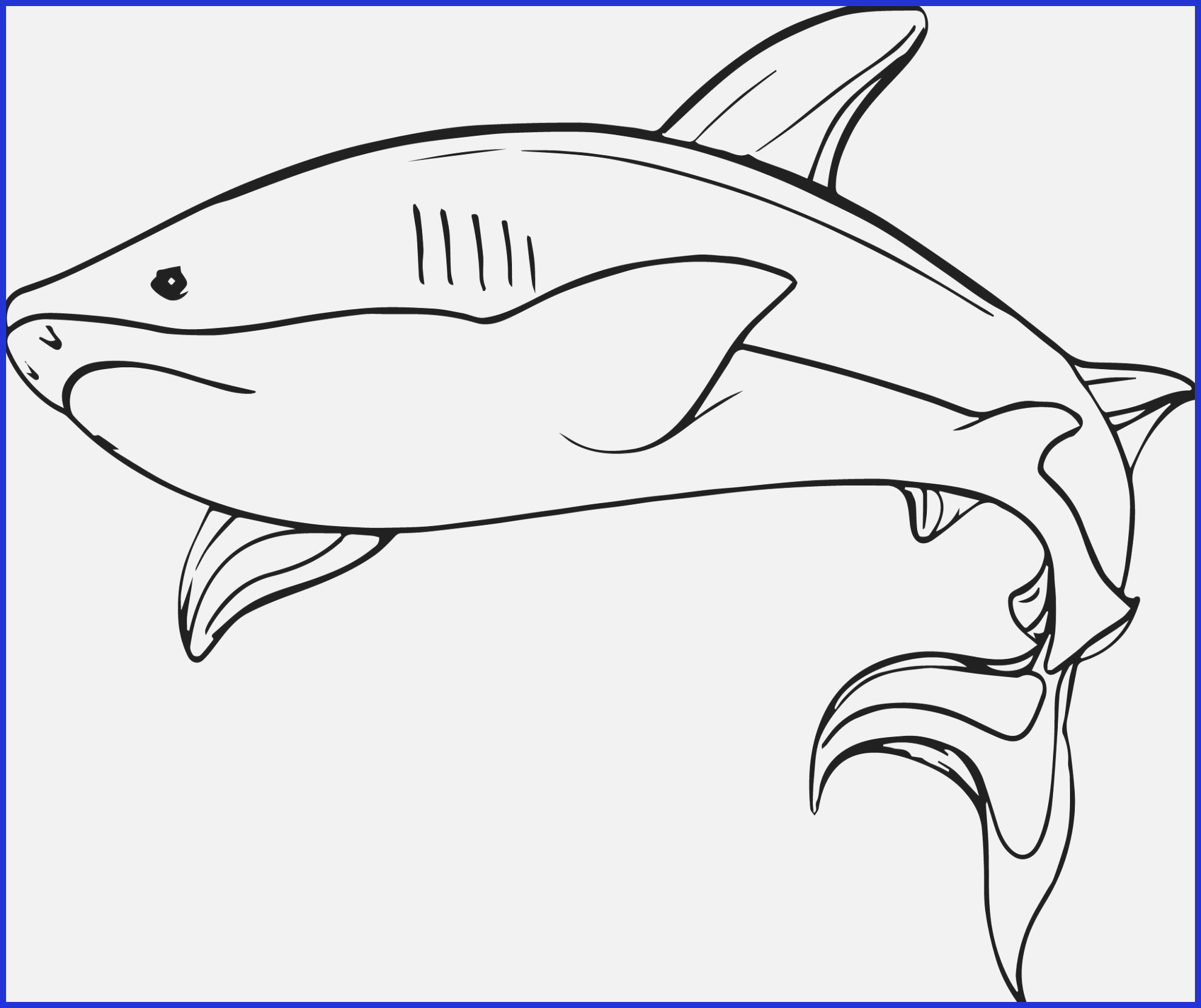 Great White Shark Coloring Pages Printable | Free Coloring ...