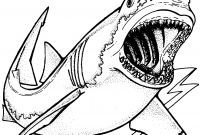 Great White Shark Coloring Pages - Luxury Great White Shark Coloring – Doyanqq