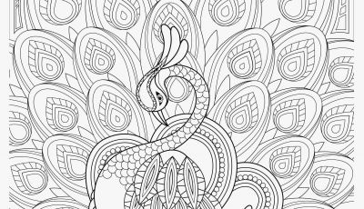 Hans Coloring Pages - Preschool Coloring Sheets Examples Kids Printable Coloring Pages New