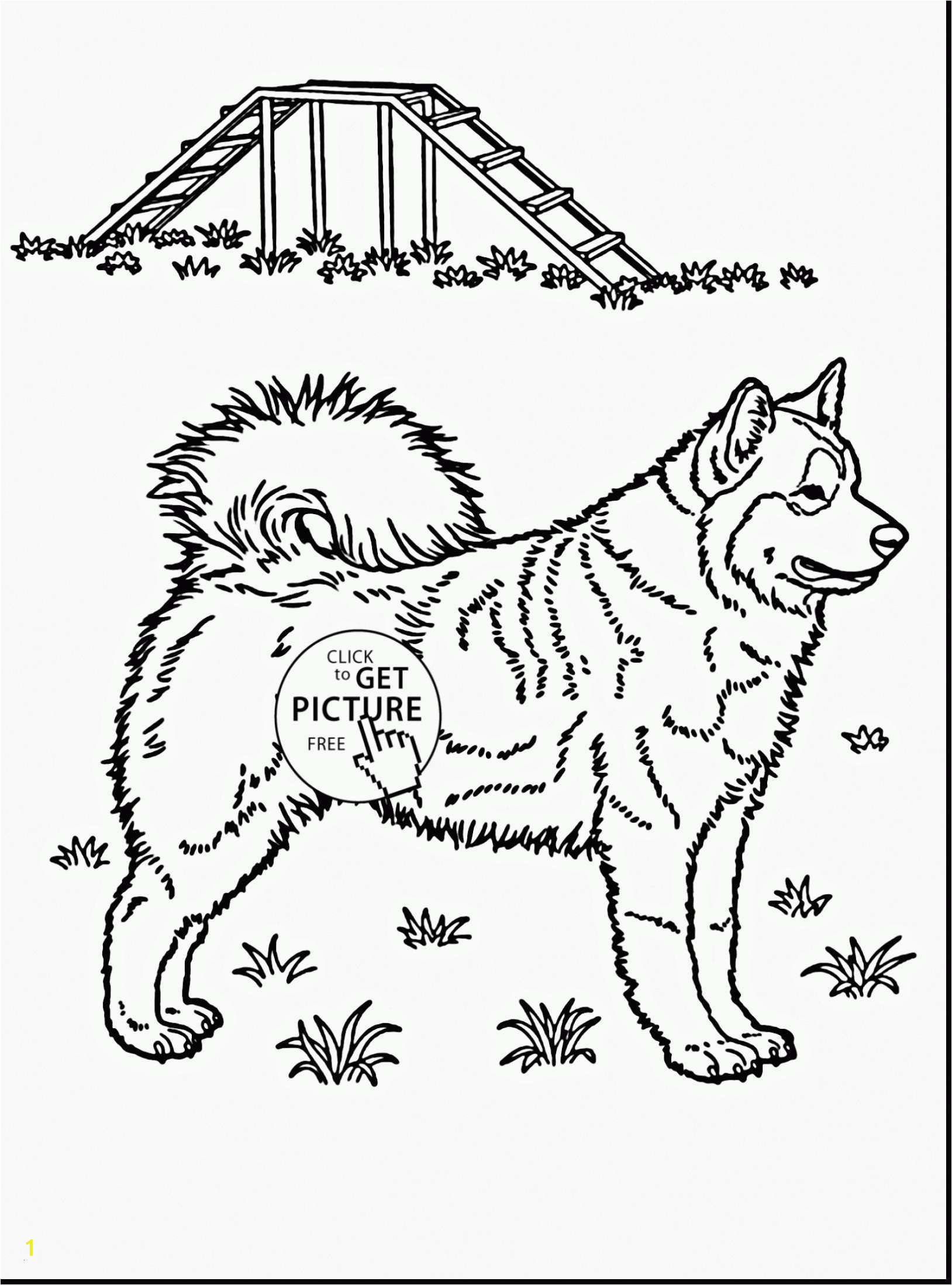 Indian Coloring Pages Printables  Download 13f - Free Download