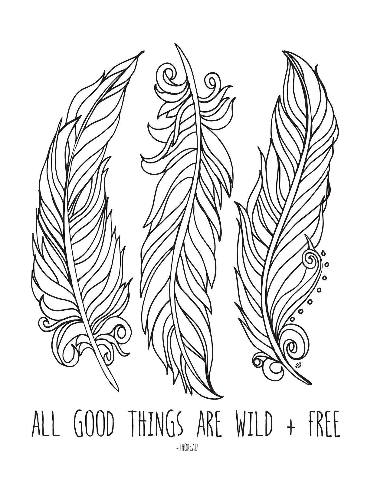 Indian Feathers Coloring Pages  Download 19c - Save it to your computer