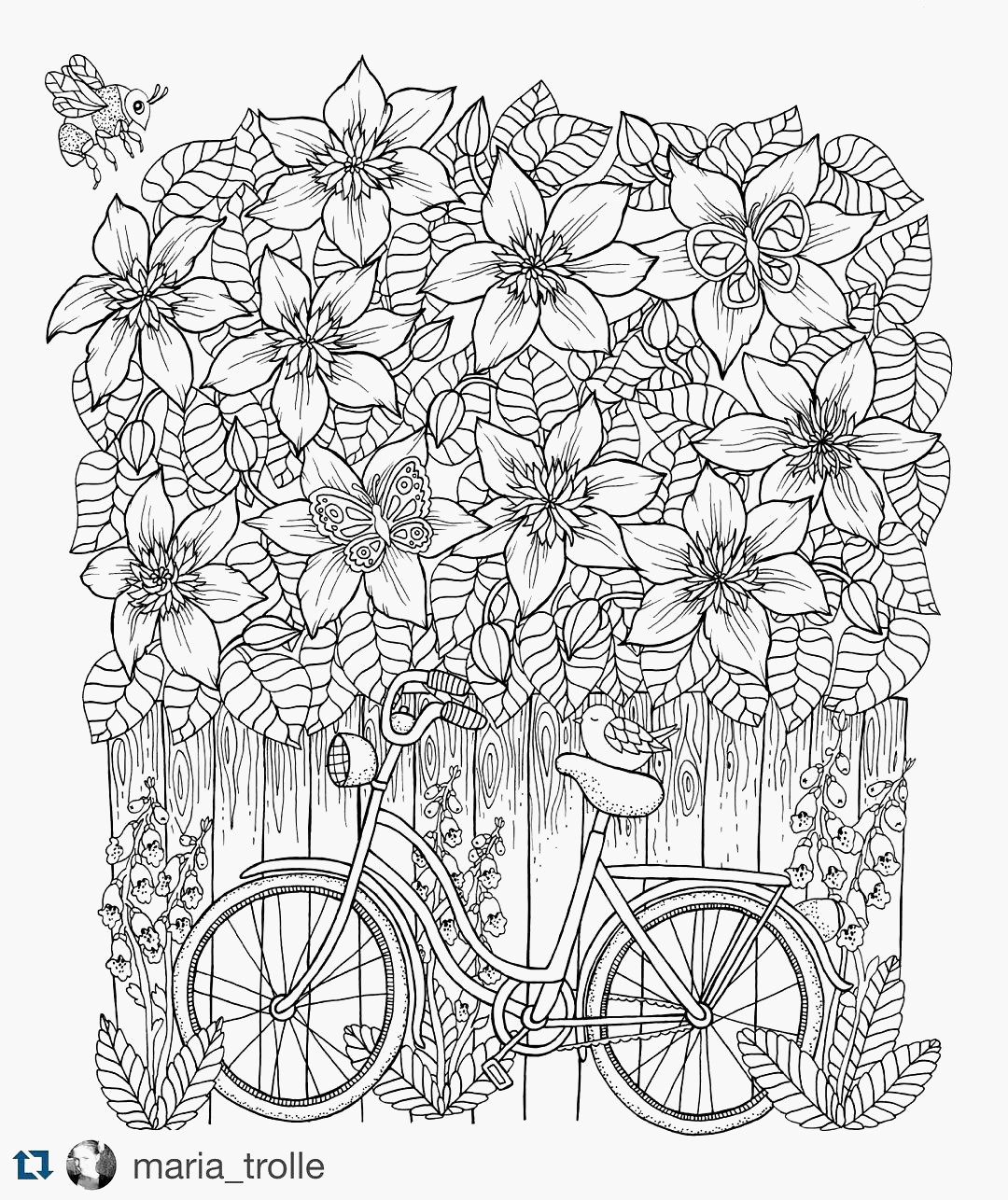 Isaiah Coloring Pages  Gallery 19g - To print for your project