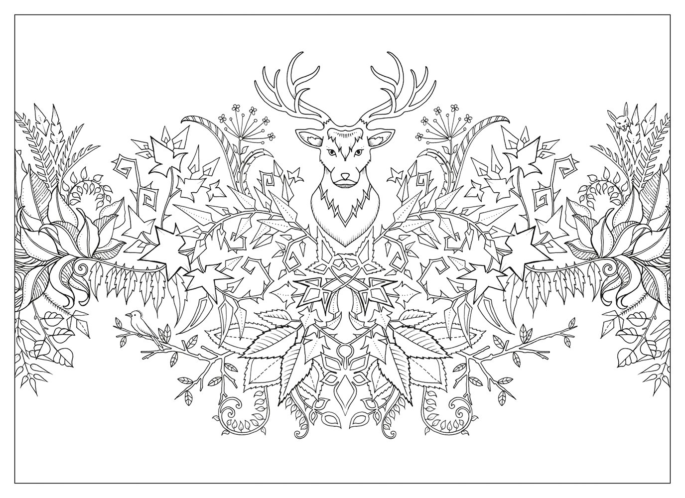 Johanna Basford Coloring Pages Collection   Free Coloring ...