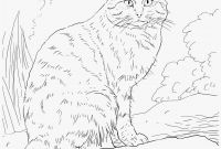 Kittens Coloring Pages - 26 New Free Printable Puppy Coloring Pages Professional