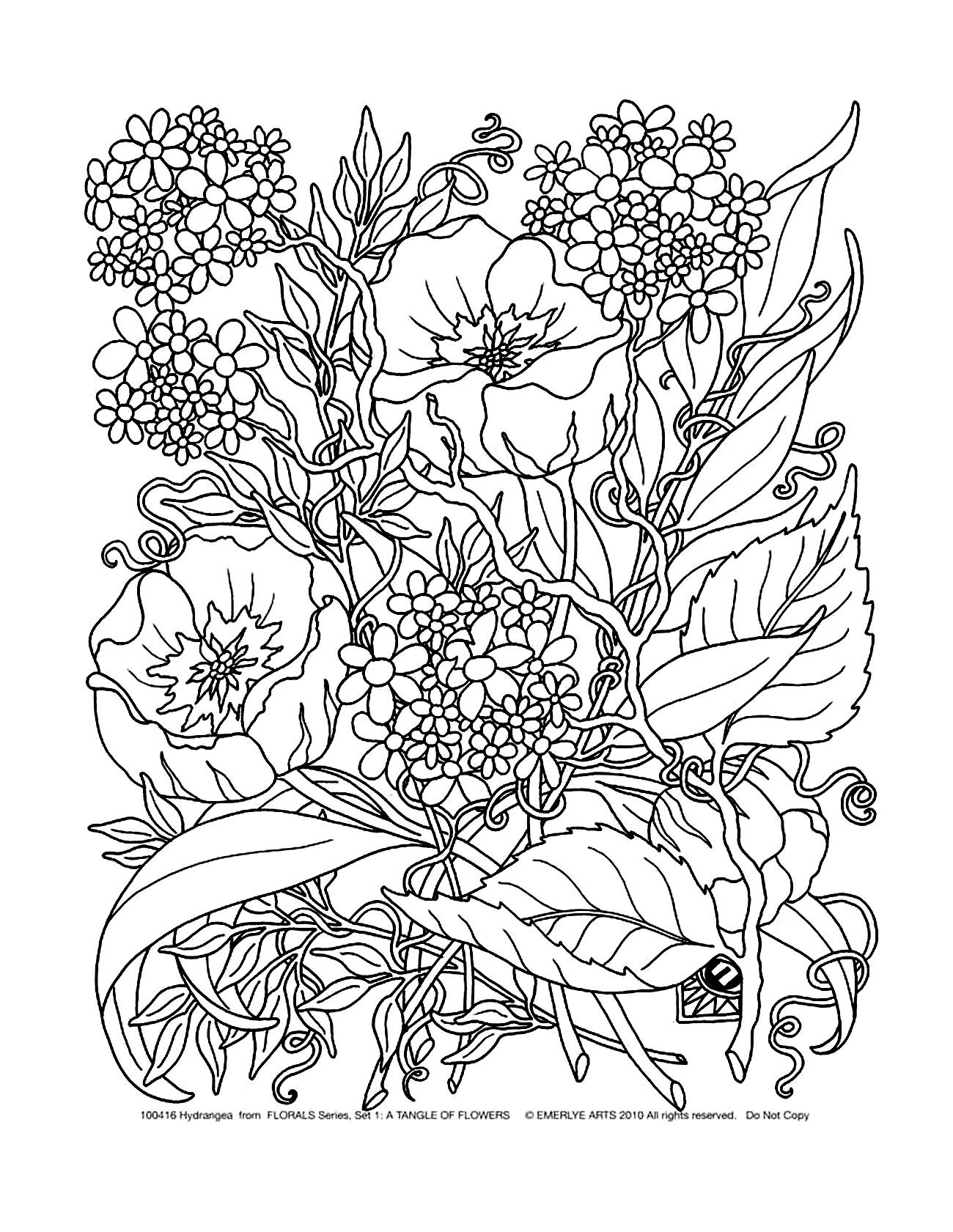 Magnolia Coloring Pages - Free Coloring Page Coloring Adult Savage Flowers