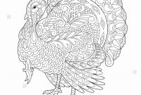 Marine Coloring Pages - Feather Coloring Page Fresh Home Coloring Pages Best Color Sheet 0d