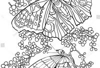 Monarch butterfly Coloring Pages Free - A butterfly Coloring Page Unique butterfly Coloring Pages Unique