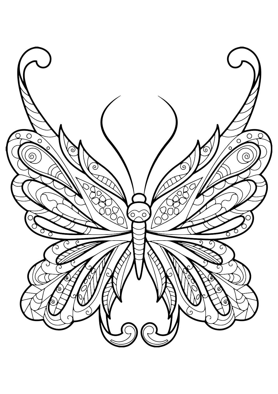 Monarch butterfly Coloring Pages Free  Gallery 10p - Free Download